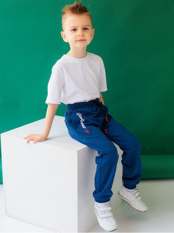 Дитячі спортивні брюки на хлопчика з вишивкою 10032